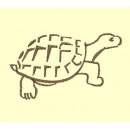 tortue - 2 tailles